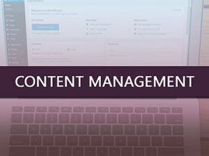 Content Management - Infinite Staffing Solutions